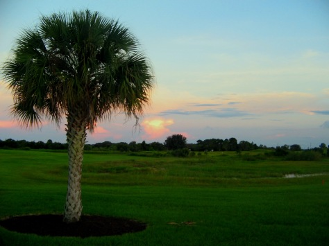 Evenings Tide of Light ...Orlando, Florida
