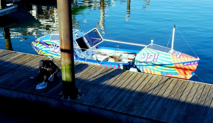 rowing-machine