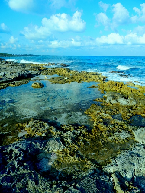 Akumal headlands small