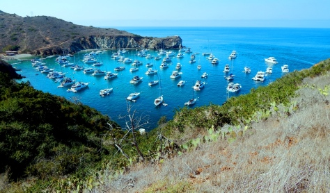 Catalina Two