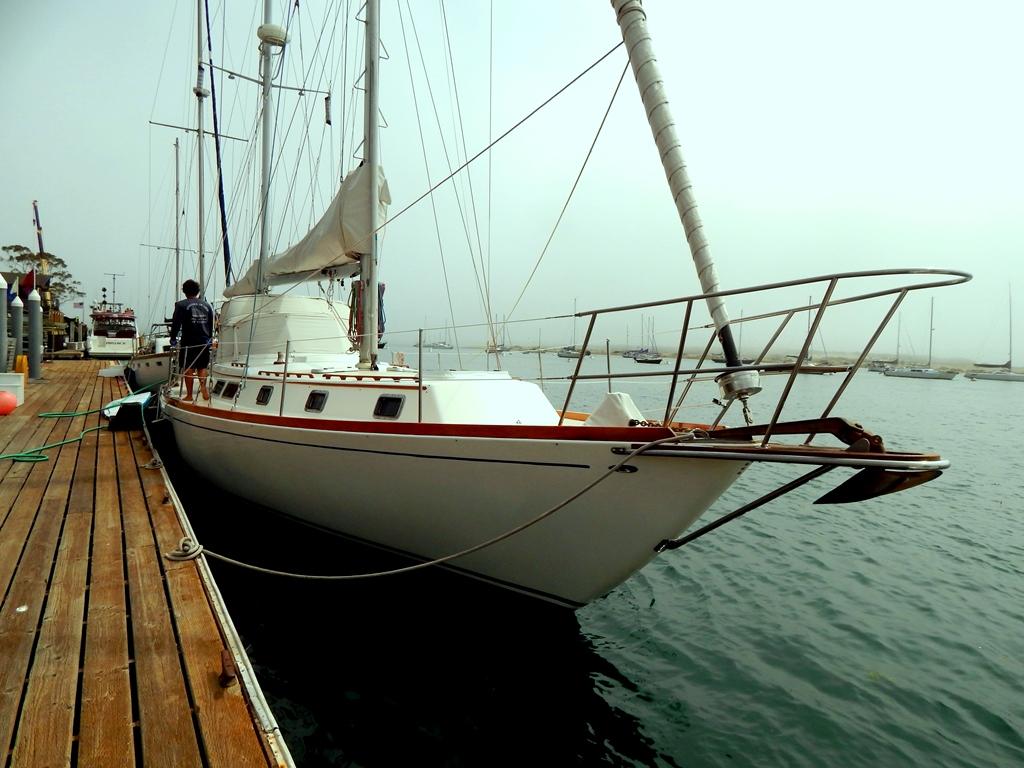 Varley's Gulf Star 50